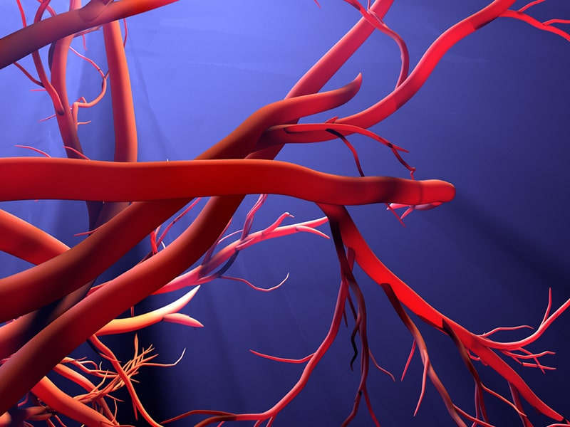 Deflanil aiuta il microcircolo del sangue nei capillari